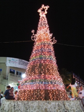 X'mas Tree in Saipan